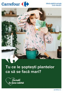Catalog Carrefour ( Acum 2 de zile )