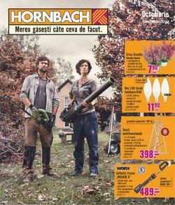 Oferte Materiale de Constructii și Bricolaj în catalogul Hornbach ( 9 zile)