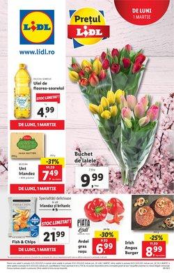 Catalog Lidl ( Publicat ieri )