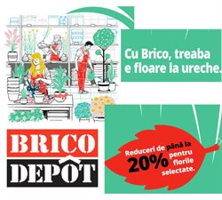 Catalog Brico Depôt ( Expiră astăzi )