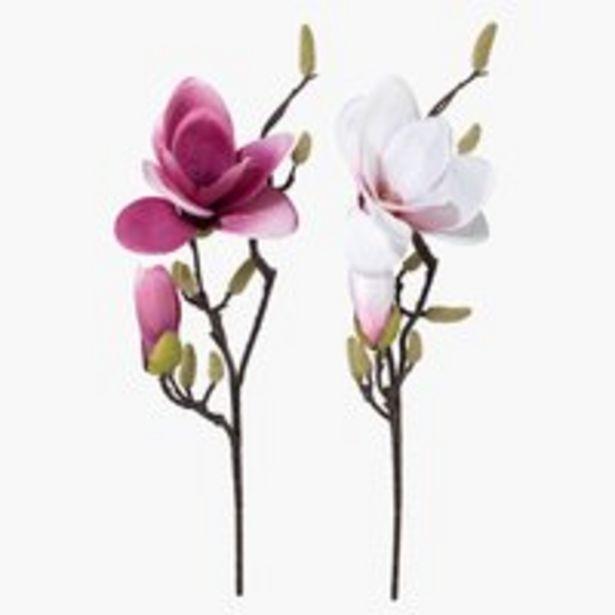 Ofertă Floare artificială RONNY 51cm var. 24,99 lei